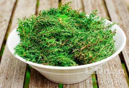 با خوردن این گیاه سرفه را متوقف کنید