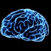 عادات خطرناک و مضر برای مغز