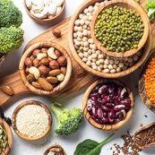 سبزیجات پروتئین دار را بشناسیم