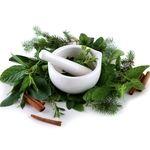 گیاهان مفید در مراقبت از مو(۲)