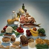 اطلاعاتی در مورد هرم مواد غذایی