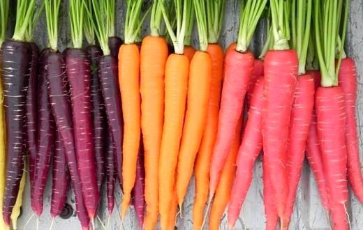 هویج دارای چه خواصی است؟