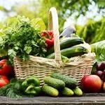 گروه سبزیها و میوه ها را روزانه به چه میزان مصرف نمائیم؟