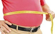 چه عواملی سبب چاقی می شوند ؟
