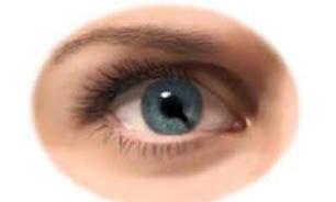 تمرینهای نور - تاریکی برای بهبود کارکرد شبکیه چشم