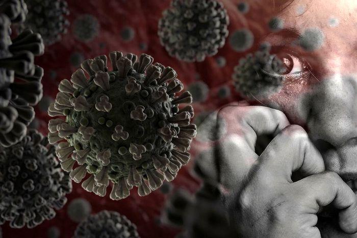 ویروسی کشنده نیپاه در راه است