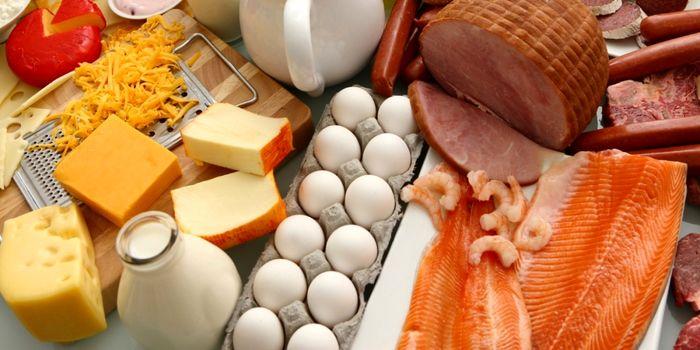بهترین مواد غذایی دارای پروتئین