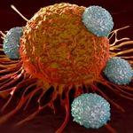 نحوه ی تکثیر سلول های سرطانی در بدن
