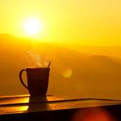 نور صبحگاهی، باعثکاهش وزن شما می شود!