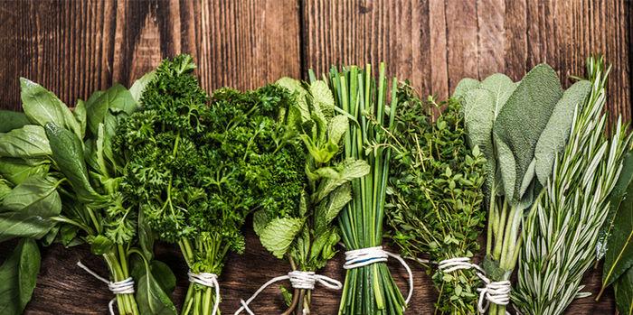 با سبزهای مفید  برای بدن آشنا شوید
