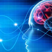 انواع آزمایش های مرتبط با سیستم عصبی(۱)
