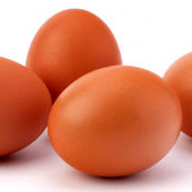تخم مرغ، غذایی مناسب بعد از تمرینات ورزشی