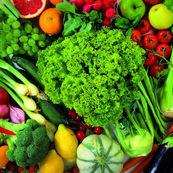 چگونه فیبرو الیاف غذاهای طبیعی با چربیها می جنگند؟