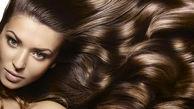 طرز تهیه شامپو طبیعی نرم کننده، شفاف کننده و تقویت کننده مو