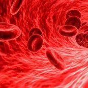 مهمترین نشانه کم خونی چیست؟