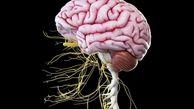 تاثیرات مصرف امگا-3 در درمان فراموشی