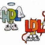 کلسترول HDL چیست؟