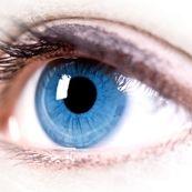 ضرورت تمرین و امکان ترمیم و بهبودکارآیی چشم
