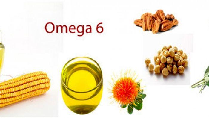 امگا-6 چیست؟